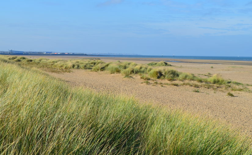 La clôture peut ressortir des aménagements légers autorisés dans un espace remarquable du littorale